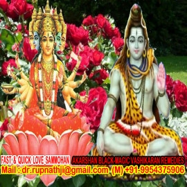 best astrologer of india