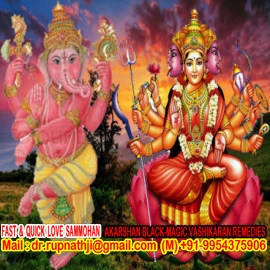 online vedic astrologer tantric remedies