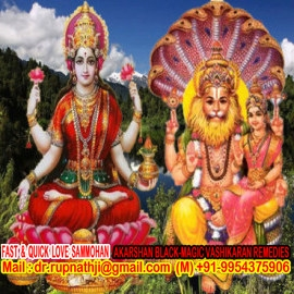 vedic astrology solutions